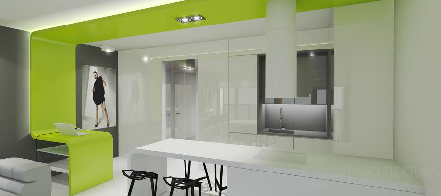 projekt wnętrz loft warszawa projekt 2-2